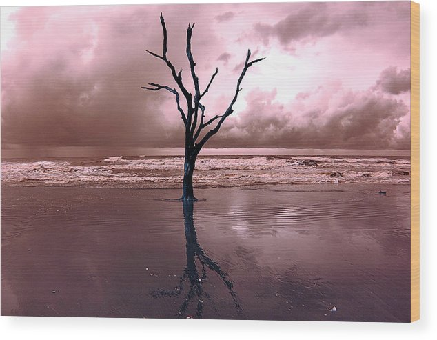 Trees Wood Print featuring the photograph Storms Are Comming by Stephen Pacello