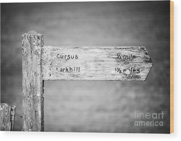 Worn Wood Print featuring the photograph Worn Wooden Direction Sign For Cursus And Larkhill At Stonehenge Wiltshire England Uk by Joe Fox