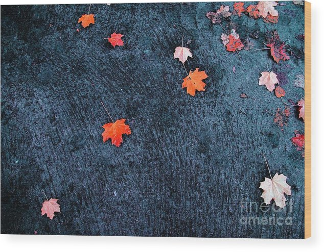 Autumn Wood Print featuring the photograph About Autumn by Vadim Grabbe