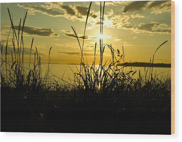 Wood Print featuring the photograph Birch Bay Sunset by JK Photography