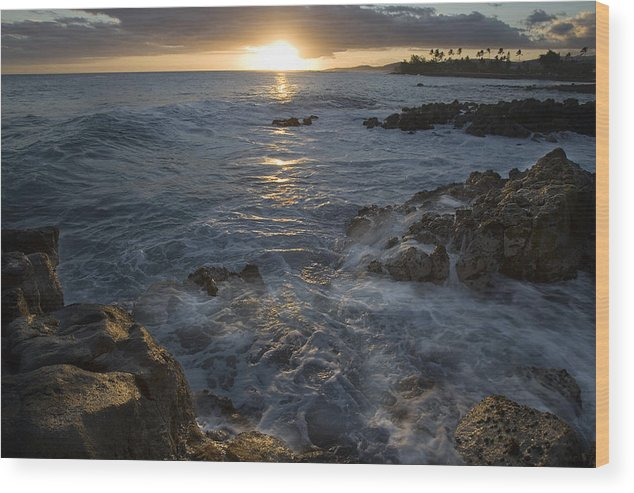 Brenneke Wood Print featuring the photograph Brenneke Sunset by Nick Galante
