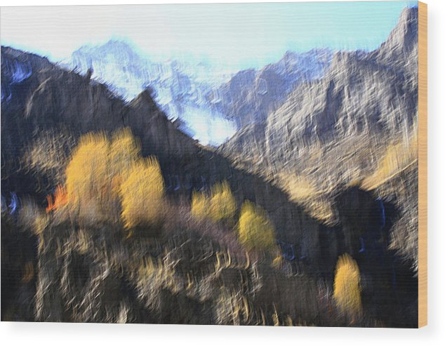 Autumn Wood Print featuring the photograph Change by Robert Shahbazi