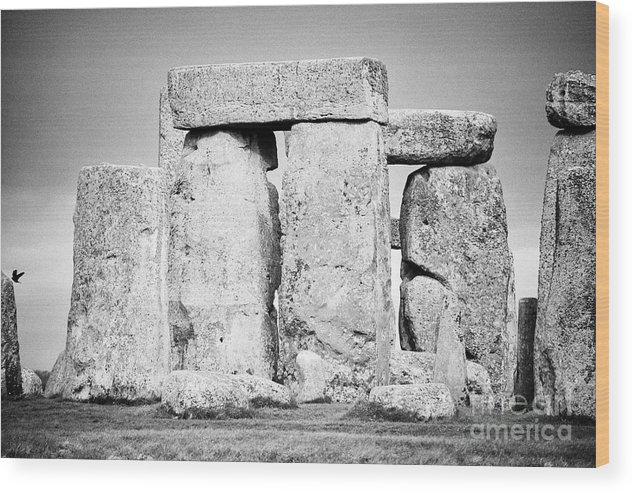 Stonehenge Wood Print featuring the photograph Close Up View Of Circle Of Sarsen Stones With Lintel Stones Stonehenge Wiltshire England Uk by Joe Fox