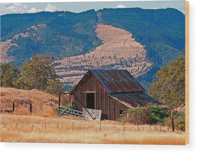Architecture Wood Print featuring the photograph Columbia River Barn by Peter Tellone