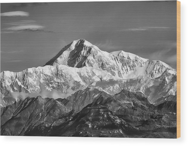 Alaska Wood Print featuring the photograph Denali Grey by Ed Boudreau