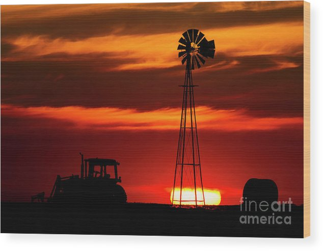 Brad Wood Print featuring the photograph Farm Silhouettes by Brad Allen Fine Art