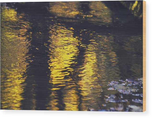 October Wood Print featuring the photograph Golden October by Wedigo Ferchland