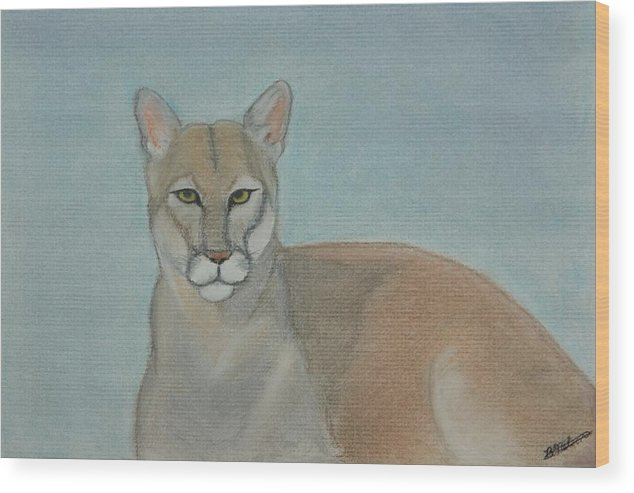 Mountain Lion Wood Print featuring the painting Mountain Lion - Pastels - Color - 8x12 by B Nelson