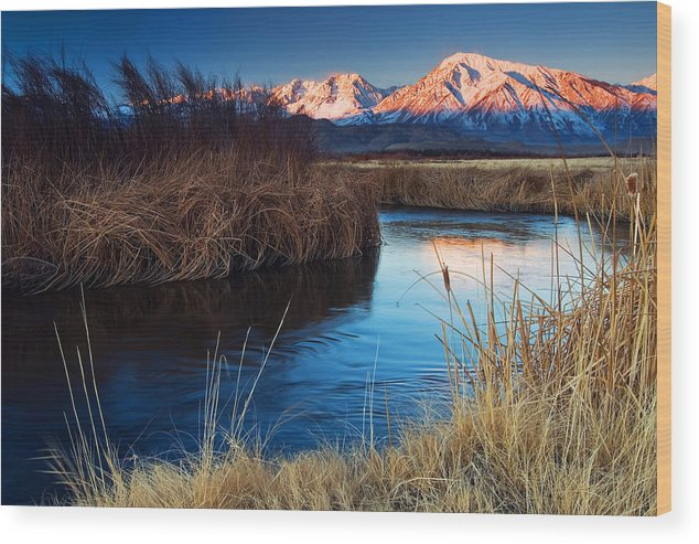 Eastern Sierra Wood Print featuring the photograph Owens River Sunrise by Nolan Nitschke