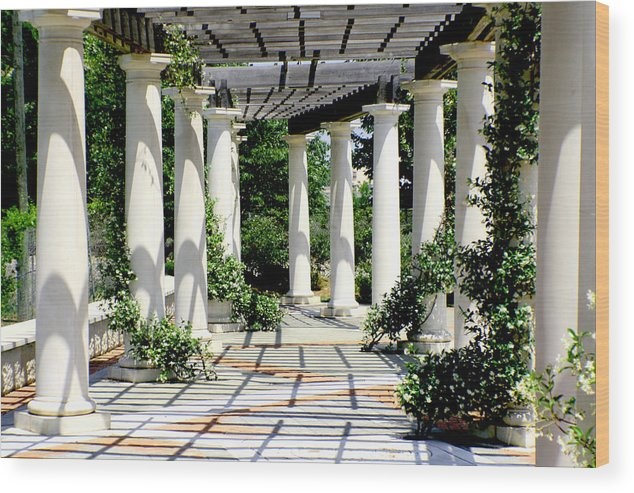 Pergola Wood Print featuring the photograph Pillars by Greg Sharpe