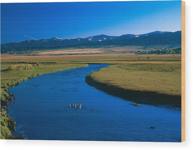 Agriculture Wood Print featuring the photograph Rio Culebra Co by Troy Montemayor