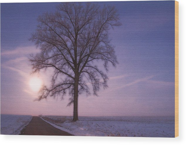 Tree On Country Road During Moonset Wood Print featuring the digital art Solstice by Priscilla Rink