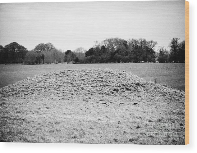 Stonehenge Wood Print featuring the photograph Stonehenge Bowl Barrow Wiltshire England Uk by Joe Fox