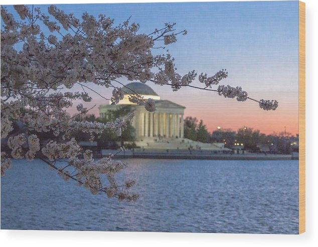 Cherry Blossoms Wood Print featuring the photograph Sunset At The Basin by Alex Daniels