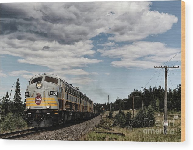 Alberta Wood Print featuring the photograph The Royal Canadian Pacific by Brad Allen Fine Art