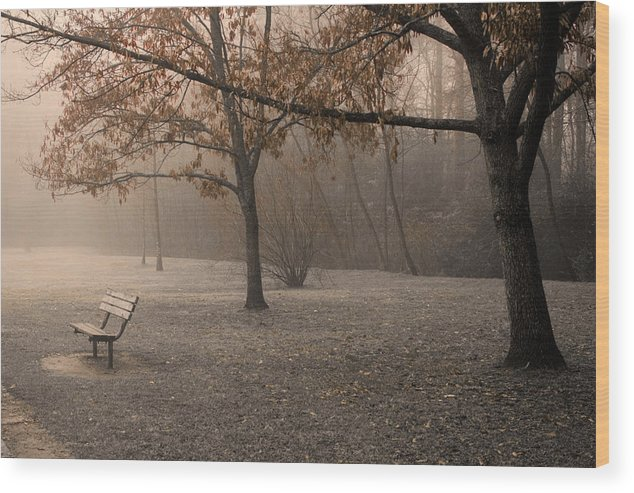 Park Wood Print featuring the photograph Waiting For God by Ayesha Lakes