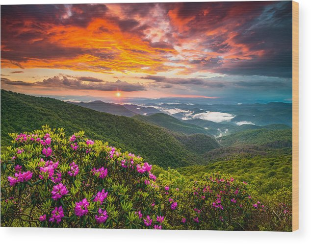 Blue Ridge Parkway Wood Print featuring the photograph Asheville North Carolina Blue Ridge Parkway Scenic Sunset by Dave Allen