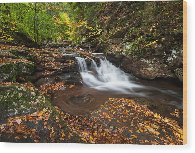 Allegheny Front Wood Print featuring the photograph Ricketts Glen State Park Pennsylvania Autumn Waterfall Scenic by Mark VanDyke