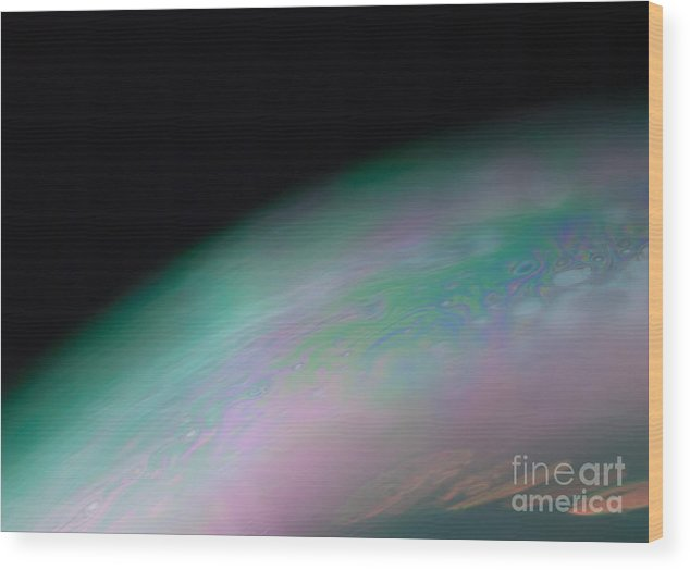 Macro Wood Print featuring the photograph Europa 2 by Christopher Wilson