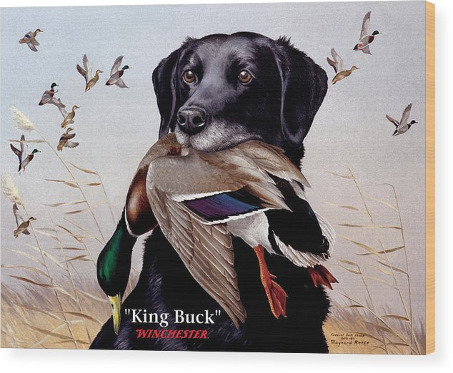Dog Wood Print featuring the painting King Buck  1959 Federal Duck Stamp Artwork by Maynard Reece
