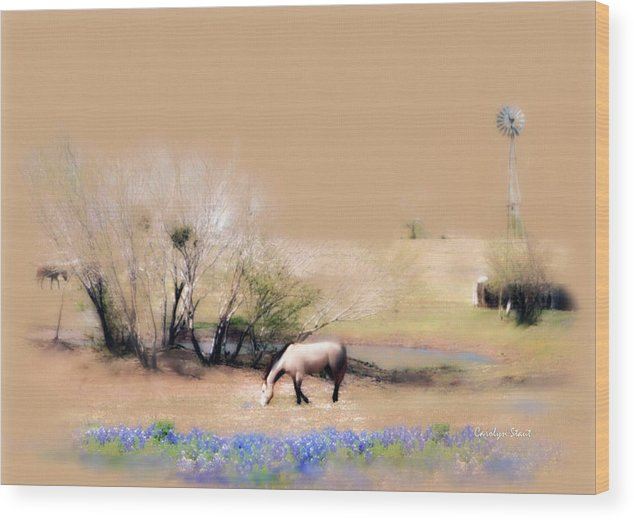 Texas Horses Pasture Bluebonnets Windmill Landscape Wood Print featuring the painting Taking It Slow And Easy by Carolyn Staut