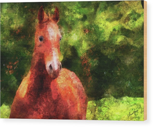 Horse Wood Print featuring the digital art Horse Study #2 by Everlasting Equine Horse Art