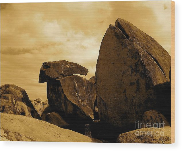 Rocks Wood Print featuring the photograph Whale Wolf And Turtle by Sergio Geraldes