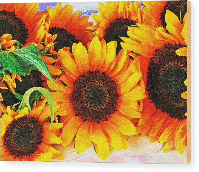 Sunflowers Wood Print featuring the photograph Sunflowers by Larry Oskin