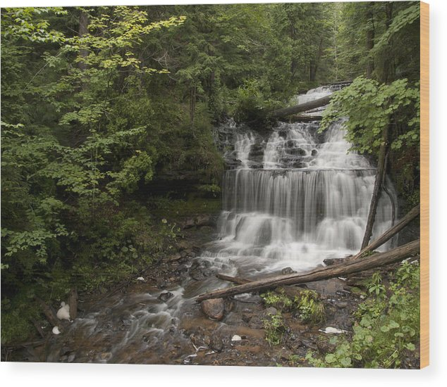 Wagner Falls Wood Print featuring the photograph Wagner Falls Forest by Cindy Lindow