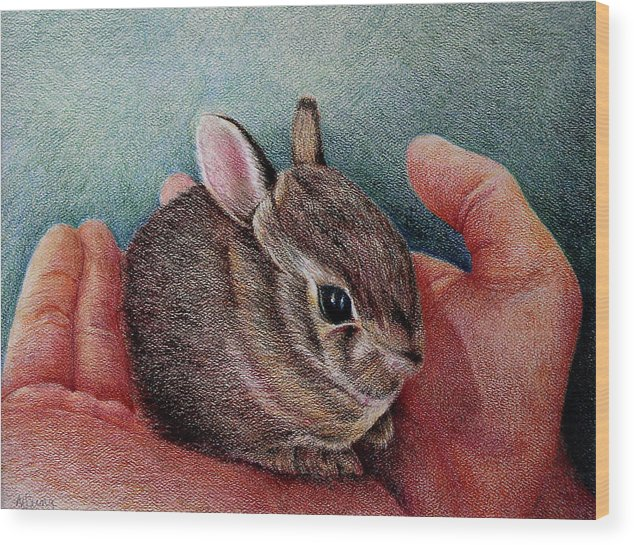Bunny Wood Print featuring the drawing He Has The Whole World.... by Mary Jo Jung