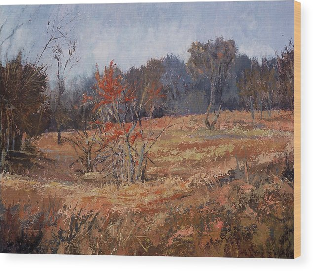 Landscape Wood Print featuring the painting November Jewels by Jimmie Trotter