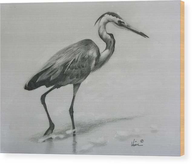 Graphite On Paper Wood Print featuring the drawing Wader by Michael Vires