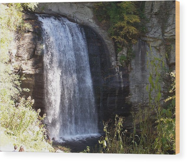 Waterfall Wood Print featuring the photograph Looking Glass Falls by Audrie Sumner