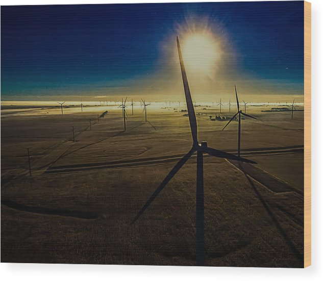 Twin Groves Wood Print featuring the photograph Early Morning Flight 1 by Jim Finch