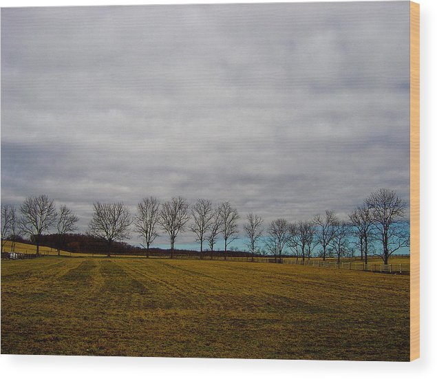 Landscape Wood Print featuring the photograph Holding Up The Sky by Sergio Geraldes