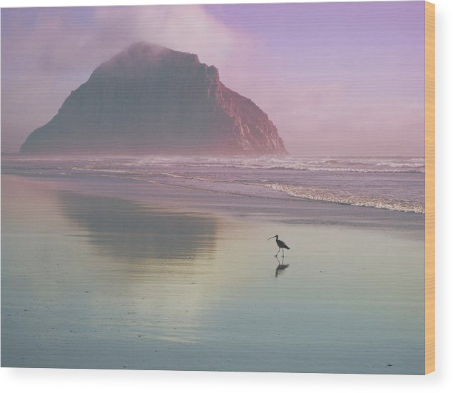Morro Wood Print featuring the photograph Morro Rock by Kevin Bergen