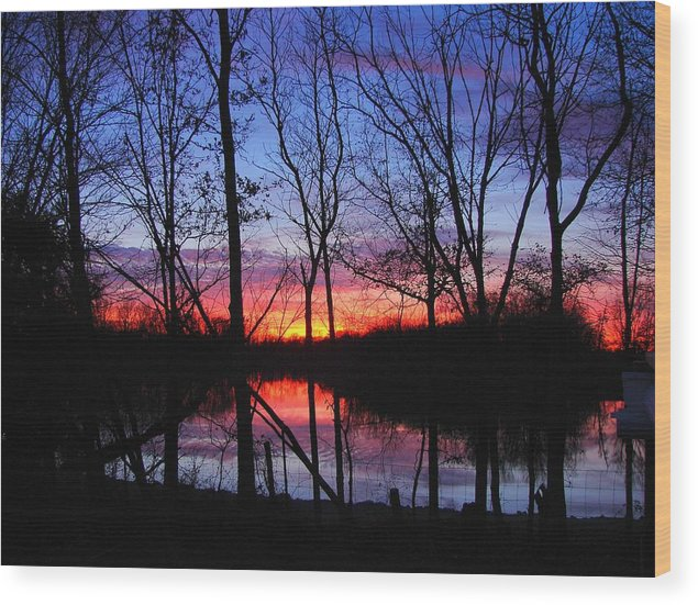 Lake Wood Print featuring the photograph My Backyard by J R Seymour