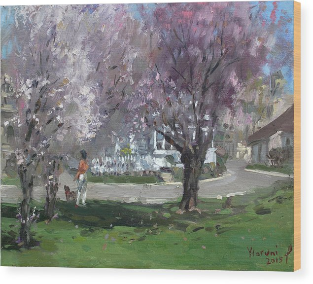 Cherry Blossom Wood Print featuring the painting Cherry Blossom by Ylli Haruni