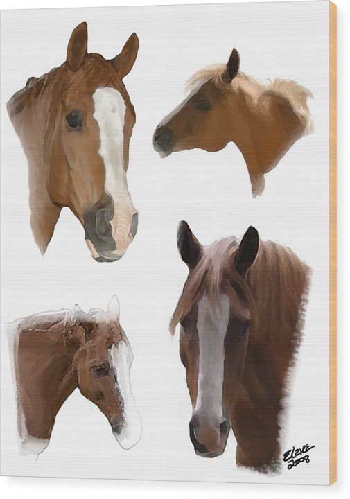 Arabian Horse Wood Print featuring the painting The Faces Of T by Elzire S