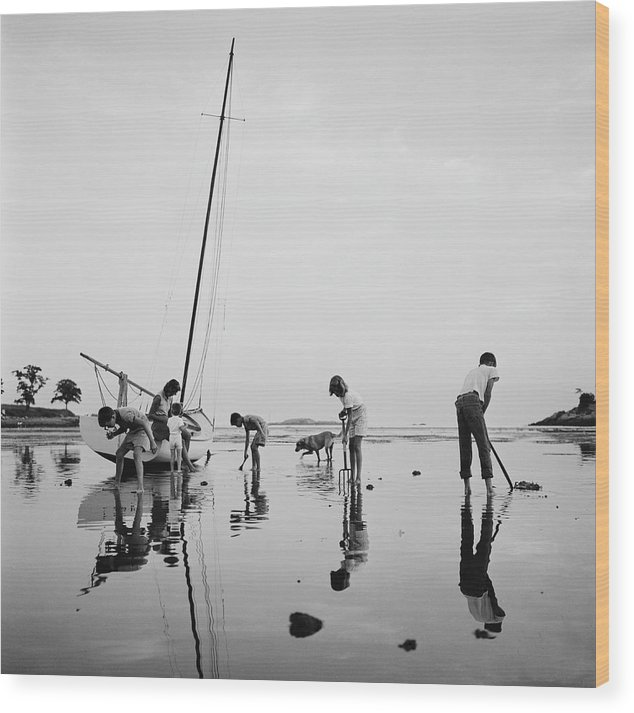 Leverett Saltonstall Wood Print featuring the photograph Digging For Clams by Slim Aarons