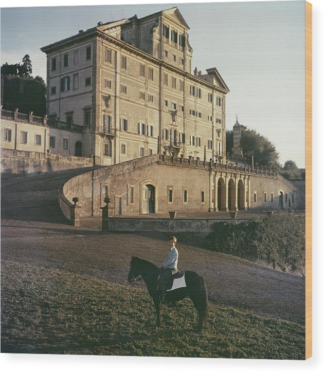 Horse Wood Print featuring the photograph Don Giovanni by Slim Aarons