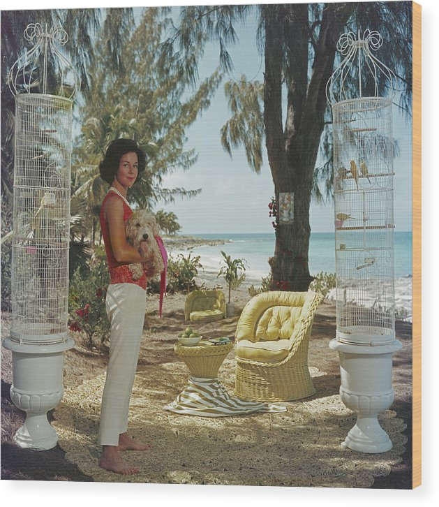 Pets Wood Print featuring the photograph Gloria Schiff by Slim Aarons