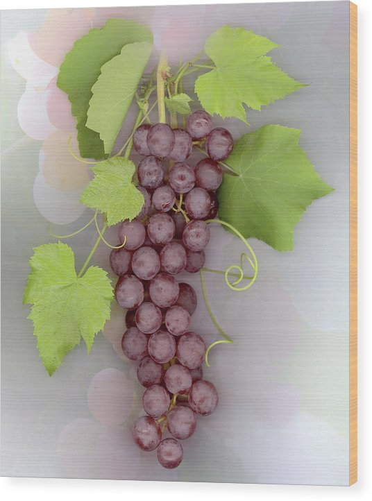 Grapes Wood Print featuring the photograph Grapes on Grapes by Sandi F Hutchins