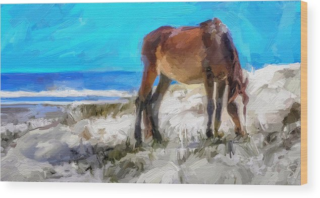 Cumberland Island Pony Horse Wood Print featuring the digital art Cumberland Pony by Scott Waters