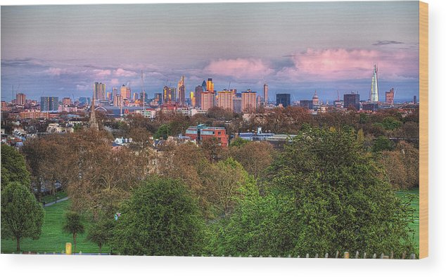 Outdoors Wood Print featuring the photograph Primrose Hill by Esslingerphoto.com