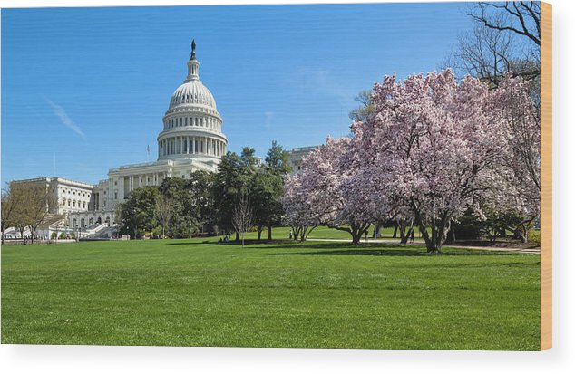 Built Structure Wood Print featuring the photograph The West Facade Of The United States by Drnadig