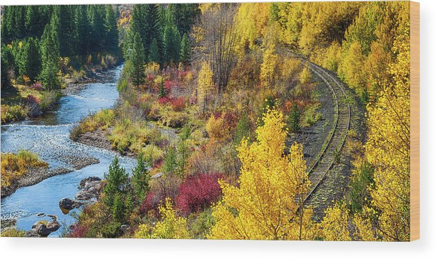 Scenics Wood Print featuring the photograph Abandoned Railway by C. Fredrickson Photography