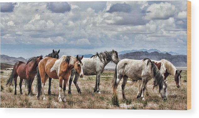 Horse Wood Print featuring the photograph The Wild Band by Gene Praag