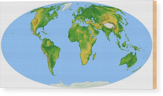 Horizontal Wood Print featuring the digital art Vegetation Map -- Oval Projection by Cartesia