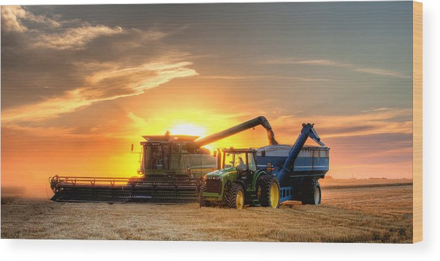 Landscape Wood Print featuring the photograph The Harvest by Thomas Zimmerman